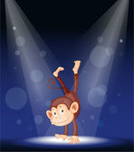 a monkey on stage