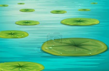 Detailed illustration of calm pond scene...