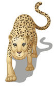Illustration of a leopard on a white background