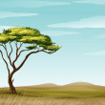 Illustration of a savannah landscape...