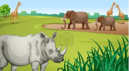 Illustration pour Illustration de Divers animaux dans une belle nature - image libre de droit