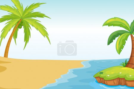 palmand coconut tree on sea shore