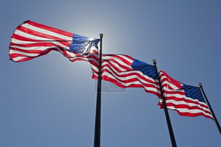 Photo for Three United States of America Flags are Blowing in the Wind. - Royalty Free Image