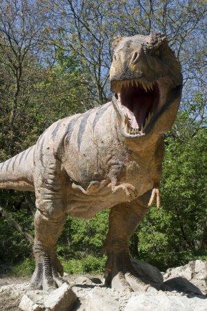 Tyrannosaurs rex - Bratislava zoo garden