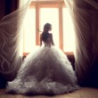 Portrait of the beautiful bride against a window i...