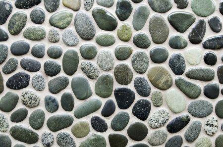 Photo pour Arrière-plan de pierres vertes sur un mur . - image libre de droit