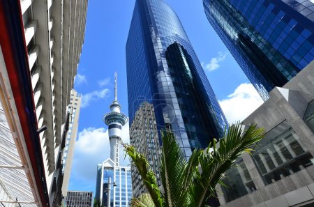 Photo for The Sky tower in Auckland New Zealand cityscape. - Royalty Free Image