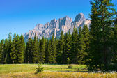 Nature landscape with Rocky Mountains in Jasper National Park, Alberta, Canada
