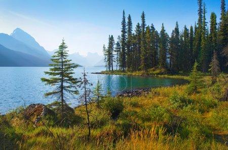Photo pour Beau paysage naturel avec le lac Maligne à l'aube dans le parc national Jasper, Alberta, Canada . - image libre de droit