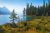 Mountain lake at sunrise in Alberta, Canada