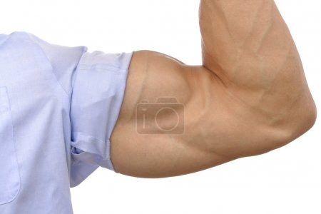 Photo for Closeup of flexed arm of muscular man with sleeve rolled up on white background - Royalty Free Image
