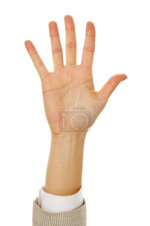 Photo pour Image de la main féminine montrant cinq doigts sur un fond blanc - image libre de droit