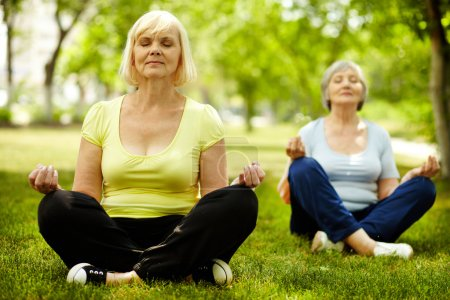 Photo for Portrait of two aged females doing yoga exercise on green grass - Royalty Free Image