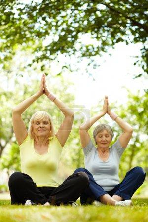Photo pour Portrait de deux femmes âgées pratiquant le yoga dans le parc - image libre de droit