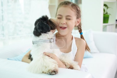 Spiel mit Hund