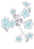 Vector illustration of beautiful blue forget-me-nots