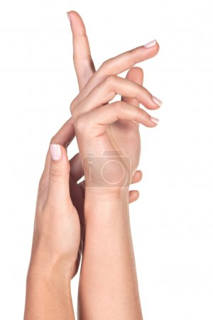 Photo for Woman's hands isolated on a white background - Royalty Free Image
