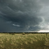 Rain cloud over Africa landscape, Serengeti National Park, Seren