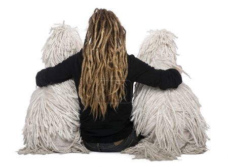 Rear view of two White Corded standard Poodles and a girl with dreadlocks sitting in front of white background