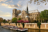 Paris, Notre Dame with boat on Seine, France