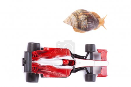 Formula 1 Snail race from above
