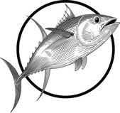 Sárgaúszójú tonhal