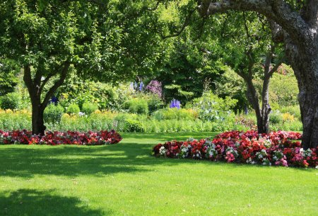 Photo for Beautifully manicured park garden in summer. - Royalty Free Image
