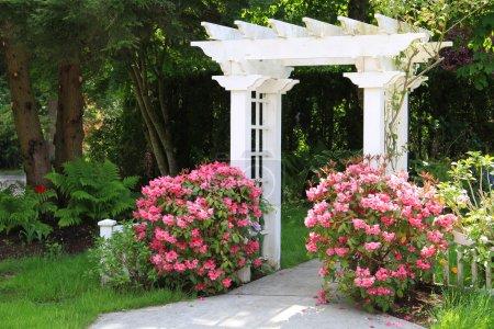 Garden arbor and pink flowers.