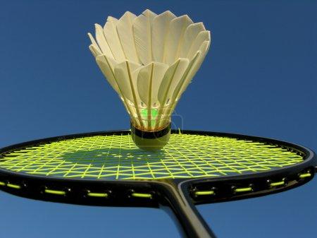 Action in Badminton
