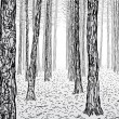 Illustration of a thick forest...