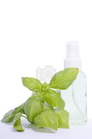Photo pour Parfum wellness naturheilkunde deodorant grün natur - image libre de droit