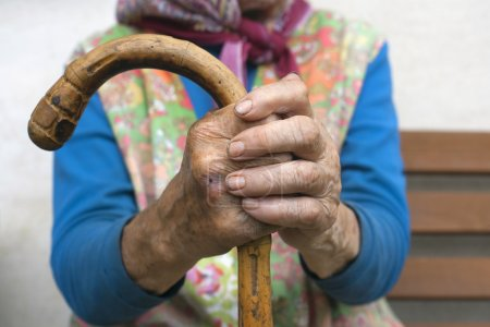 Photo pour Main d'une vieille femme paysanne tenant un bâton de marche - image libre de droit