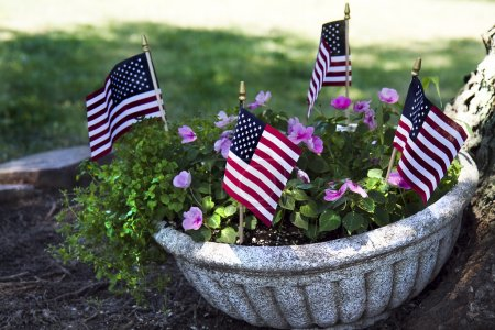 Planter American Flags