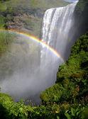 Skogafoss waterfall with rainbow
