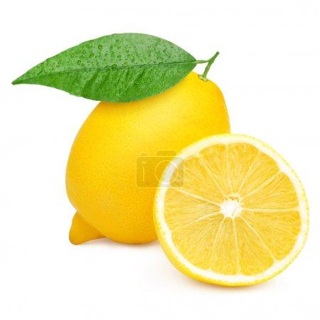 Photo for Lemons isolated on white background - Royalty Free Image
