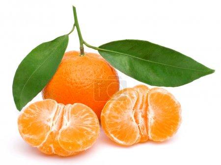 Photo pour Mandarine isolé sur fond blanc, des fruits savoureux et sains - image libre de droit