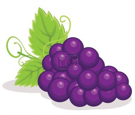 Illustration pour Illustration vectorielle des raisins rouges SPE 8 - image libre de droit