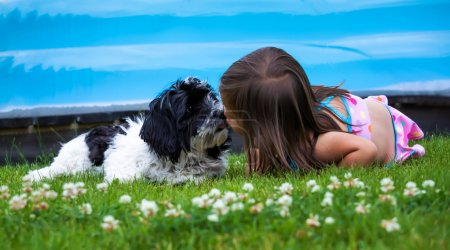 Photo for 3 year old girl kissing a black and white puppy in the grass. - Royalty Free Image