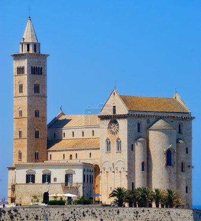A picturesque view of the Cathedral of Trani (BA)
