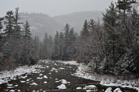 Winter first snow scenery with mountain river
