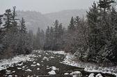 hiver première neige paysage avec rivière de montagne