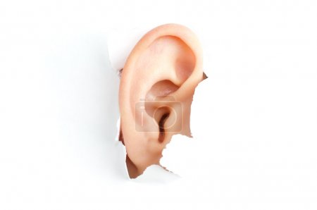 Photo for Woman ear peeping out from white torn paper - Royalty Free Image