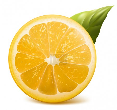 Illustration for Vector. Fresh lemon. - Royalty Free Image