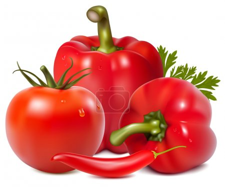 Illustration for Photo-realistic vector. Red vegetables with parsley. - Royalty Free Image