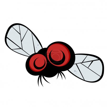Funny cartoon fly