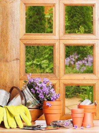 Gardening Window