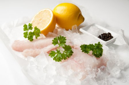 Photo for Fresh cod fillets of fish over crushed ice with parsley and lemon with salt and peppercorns - Royalty Free Image
