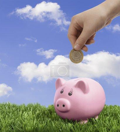 Hand depositing coin into piggy bank...