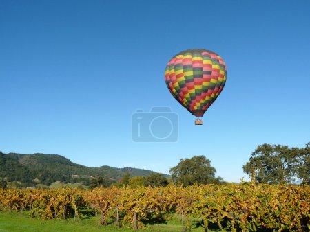 Photo pour Ballon à air chaud flottant dans les vignobles de Napa Valley - image libre de droit