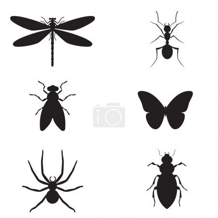 Illustration pour Insecte de silhouette vector illustration - image libre de droit